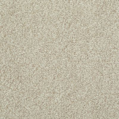 Shaw Floors Value Collections Wild Extract Net Bamboo 00103_E9461