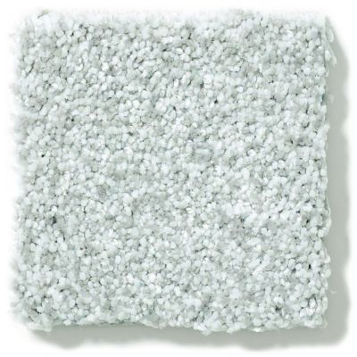 Shaw Floors Value Collections Wild Extract Net Silver Glitz 00500_E9461