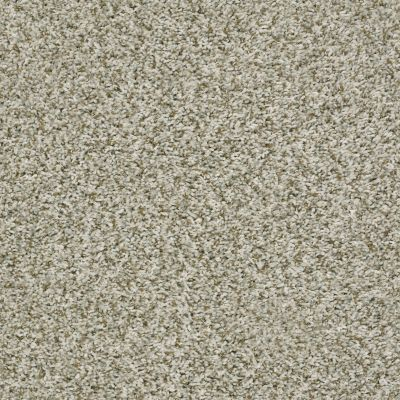 Shaw Floors See Me Sugar Cone 00110_E9492