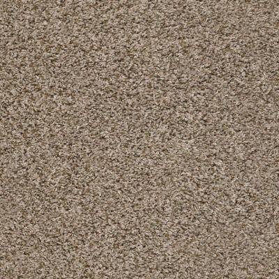 Shaw Floors See Me Chalet 00113_E9492