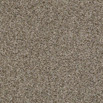 Shaw Floors See Me Pale Desert 00710_E9492