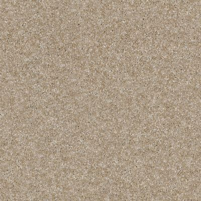 Shaw Floors Simply The Best Luminous Blonde 00111_E9494