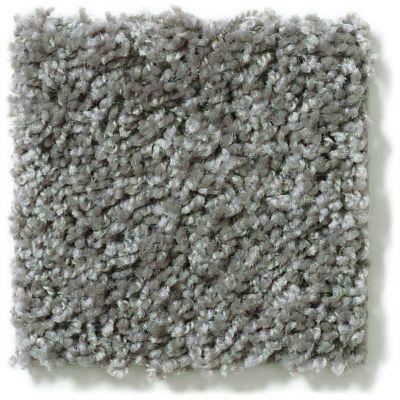 Shaw Floors Hubbell 1 Steel 00502_E9533