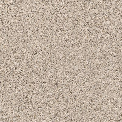 Shaw Floors Elemental Mix I Gentle Rain 00171_E9564