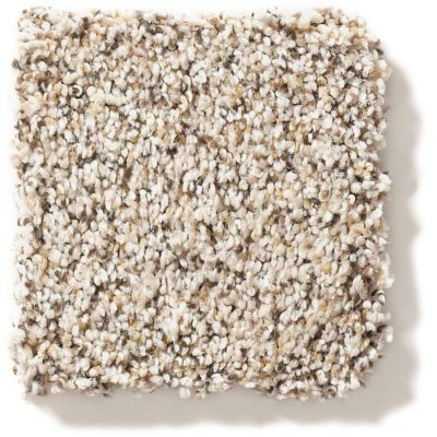 Shaw Floors Foundations Elemental Mix I Gentle Rain 00171_E9564