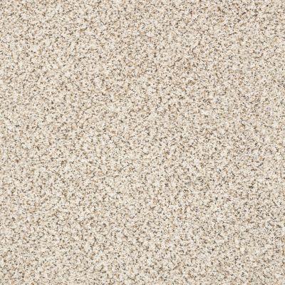 Shaw Floors Foundations Elemental Mix I Swiss Coffee 00173_E9564