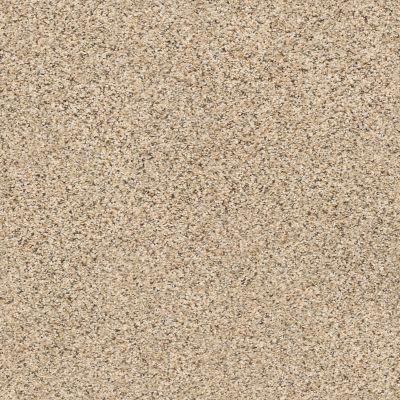 Shaw Floors Foundations Elemental Mix I Sand Castle 00174_E9564