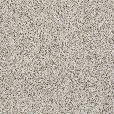 Shaw Floors Foundations Elemental Mix I Snowbound 00178_E9564