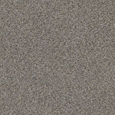 Shaw Floors Elemental Mix I Antique Pin 00571_E9564
