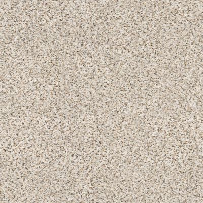 Shaw Floors Foundations Elemental Mix II Pixels 00170_E9565