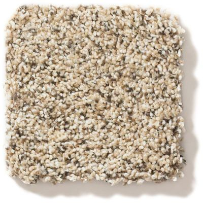 Shaw Floors Foundations Elemental Mix II Sand Castle 00174_E9565