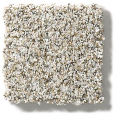 Shaw Floors Foundations Elemental Mix II Silver Lining 00572_E9565