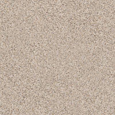Shaw Floors Foundations Elemental Mix III Gentle Rain 00171_E9566