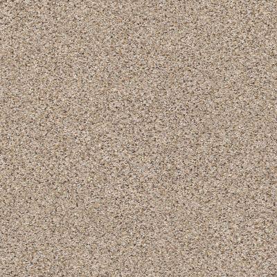 Shaw Floors Elemental Mix III Acreage 00176_E9566