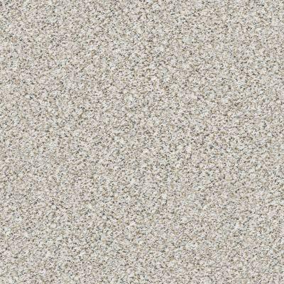 Shaw Floors Elemental Mix III Whitewash 00177_E9566