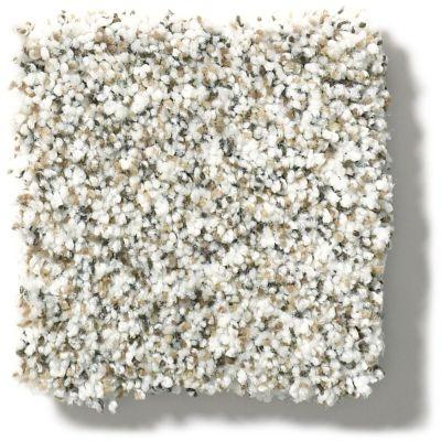 Shaw Floors Foundations Elemental Mix III Whitewash 00177_E9566