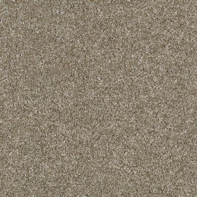 Shaw Floors Value Collections Virtual Gloss Net Granola 00113_E9570