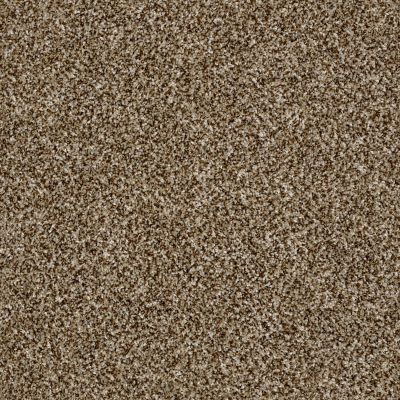 Shaw Floors Value Collections Shake It Up Net Bits Of Brown 00200_E9595
