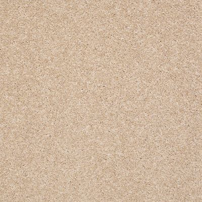 Shaw Floors Value Collections Super Buy 45 Ivory 00101_E9599