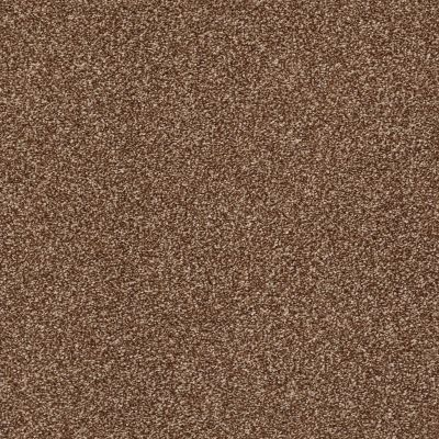 Shaw Floors Simply The Best Super Buy 45 Henna 00704_E9599