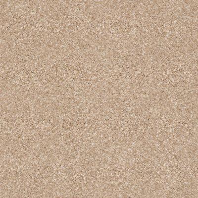 Shaw Floors Simply The Best Super Buy 55 Golden Sands 00102_E9600