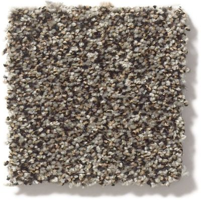 Shaw Floors Simply The Best Super Buy 55 Mountain Rock E9600_00502