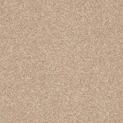 Shaw Floors Value Collections Super Buy 65 Golden Sands 00102_E9601