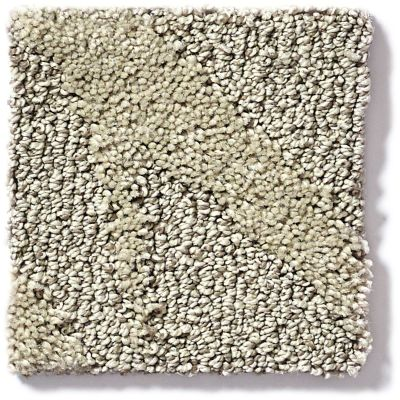 Shaw Floors Vineyard Grove Sand Swept 00102_E9608