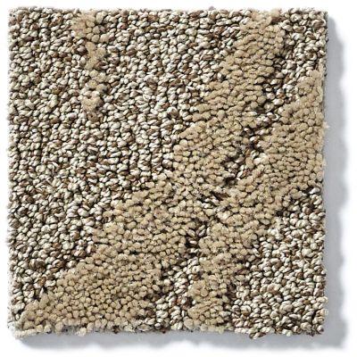 Shaw Floors Vineyard Grove Raw Wood 00700_E9608