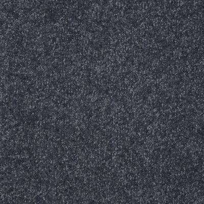 Shaw Floors Value Collections Passageway I 15 Net Denim 00401_E9620