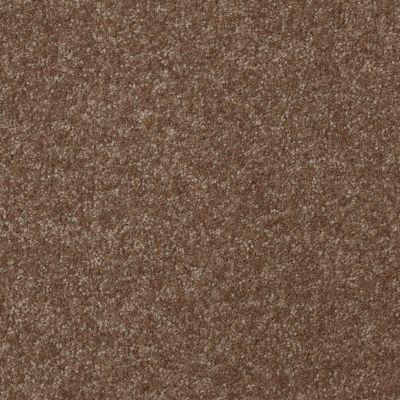 Shaw Floors Value Collections Passageway I 15 Net Jute 00703_E9620
