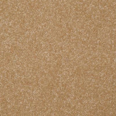 Shaw Floors Value Collections Passageway II 15 Net Straw Hat 00201_E9621