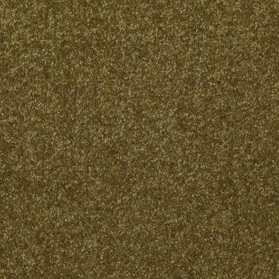 Shaw Floors Value Collections Passageway II 15 Net Green Apple 00303_E9621