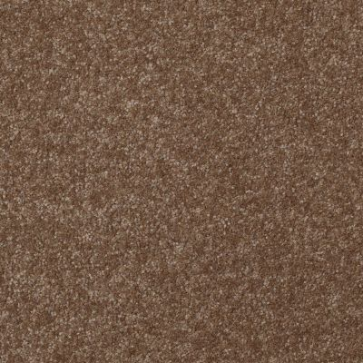 Shaw Floors Value Collections Passageway II 15 Net Jute 00703_E9621