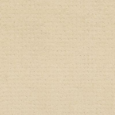 Shaw Floors Wolverine Vii Airy White 00100_E9622