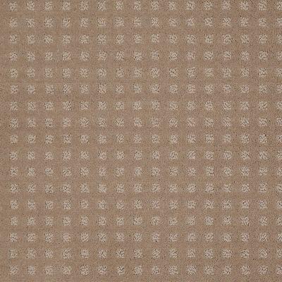 Shaw Floors Wolverine Vii Chameleon 00104_E9622
