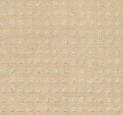Shaw Floors Wolverine Vii Honeycomb 00142_E9622