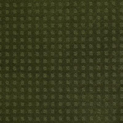 Shaw Floors Wolverine Vii Kelly 00301_E9622