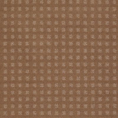 Shaw Floors Wolverine Vii Townhouse Taupe 00705_E9622