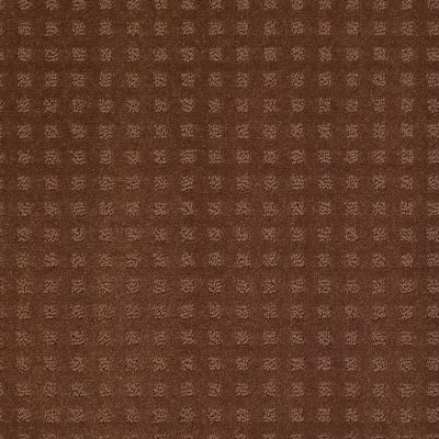 Shaw Floors Wolverine Vii Mocha Chip 00706_E9622