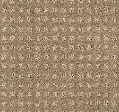 Shaw Floors Wolverine Vii Toffee 00756_E9622