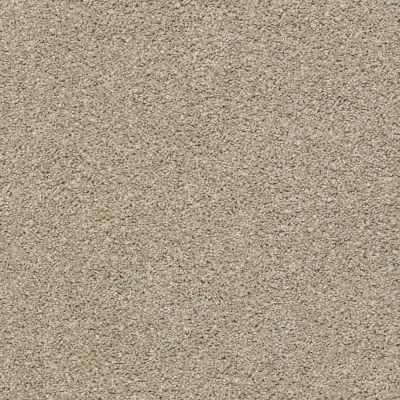 Shaw Floors Proposal Pea Gravel 00177_E9623