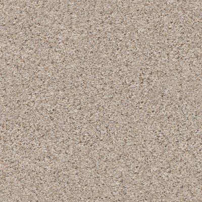 Shaw Floors Mix It Up Pencil Sketch 00570_E9624