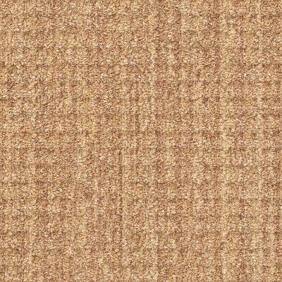 Shaw Floors Foundations Natural Boucle 15 Sisal 00200_E9634