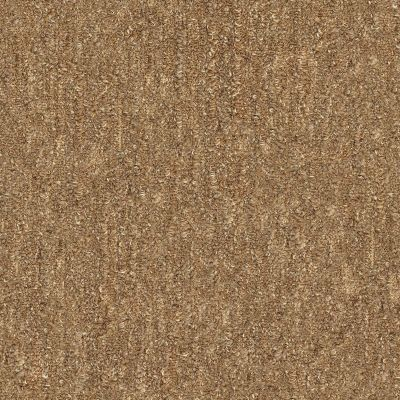 Shaw Floors Foundations Natural Balance 15 Birch 00702_E9635