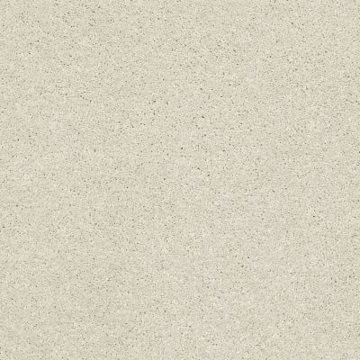 Shaw Floors Bellera Basic Rules Creamery 00103_E9639
