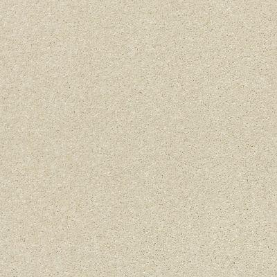 Shaw Floors Bellera Basic Rules Linen 00110_E9639