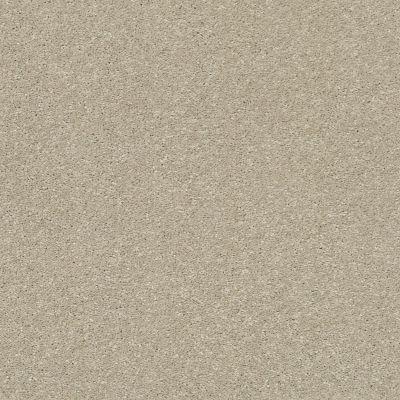 Shaw Floors Bellera Basic Rules Vicuna 00111_E9639
