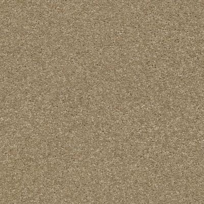 Shaw Floors Bellera Basic Rules Gold Rush 00200_E9639