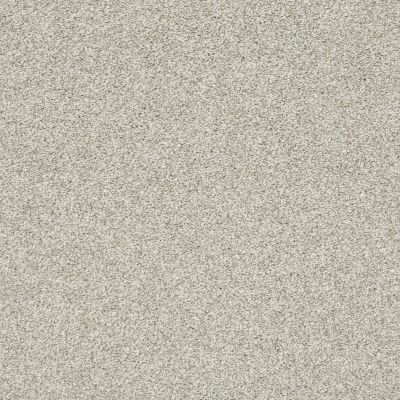 Shaw Floors Bellera Just A Hint II Fog 00503_E9641